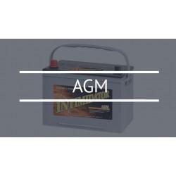 Тяговые AGM аккумуляторы