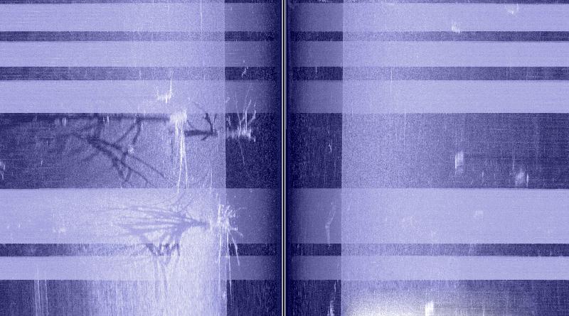 Помехи от лодочного электромотора на экране эхолота